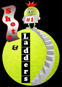 logo for MCTA and Tennis WinWin Shots and Ladders League